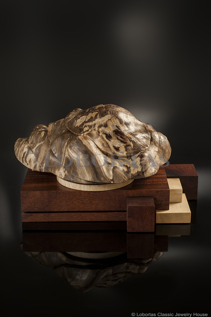 petrified-wood-maple-hornbeam-mahogany-decorative-object-180515-2-1.jpg